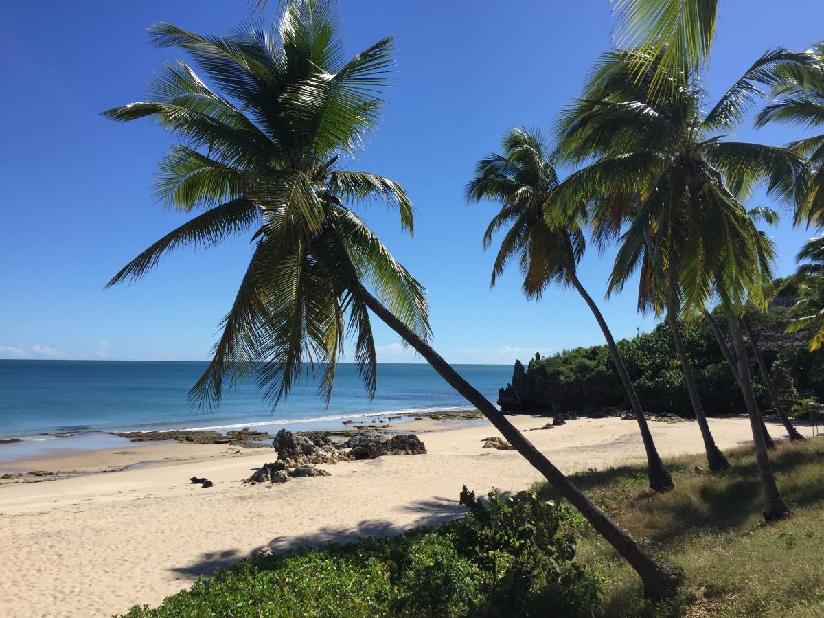 weißer Sandstrand auf Madagaskar - Piratenbucht - afrika tours individuell