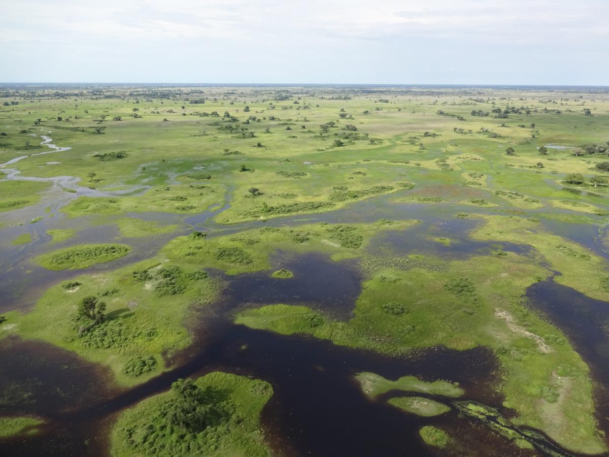 Okavango Delta aus der Vogelperspektive