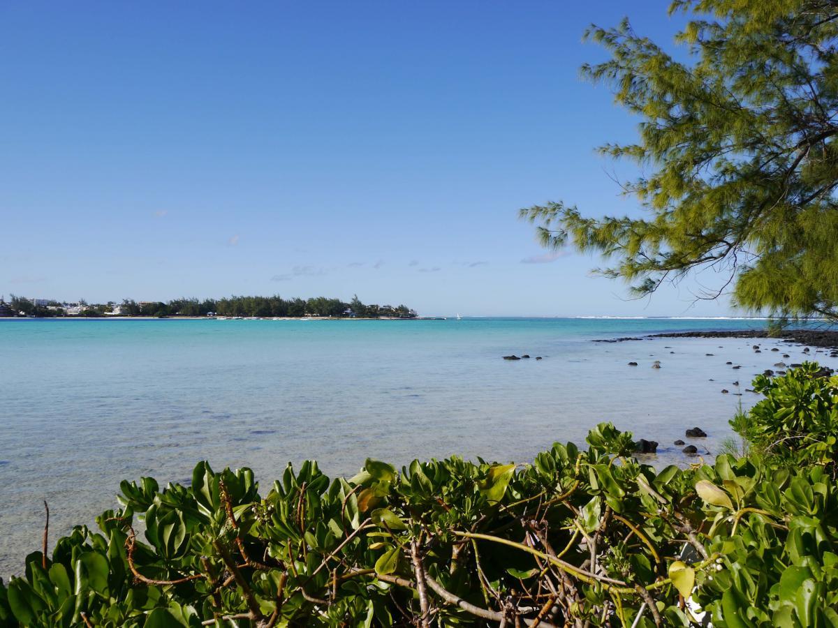 Türkies farbenes Wasser in Mauritius lädt zum Baden ein
