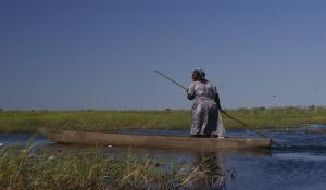 Unternehmen Sie unvergessliche Bootsausflüge auf Mokoros im Okavango Delta in Botswana