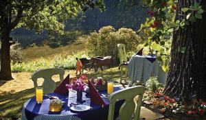 Gönnen Sie sich eine Auszeit in der herrlichen Gartenanlage des Foresters Arms Hotels in Swaziland