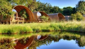 Camp Okuti im Moremi Game Reservat