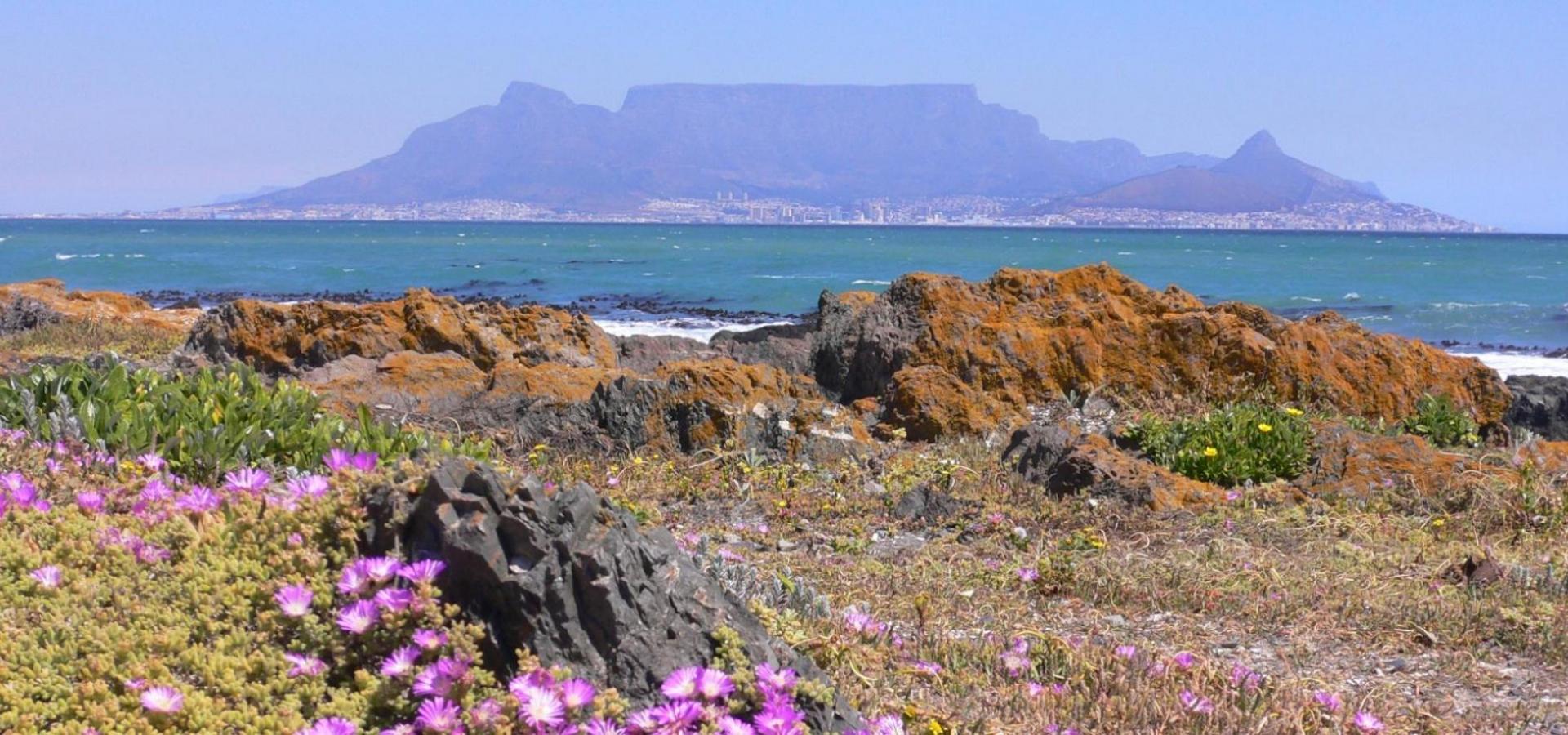 Afrika Reise: Kapstadt mit dem Tafelberg und die Kapregion entdecken