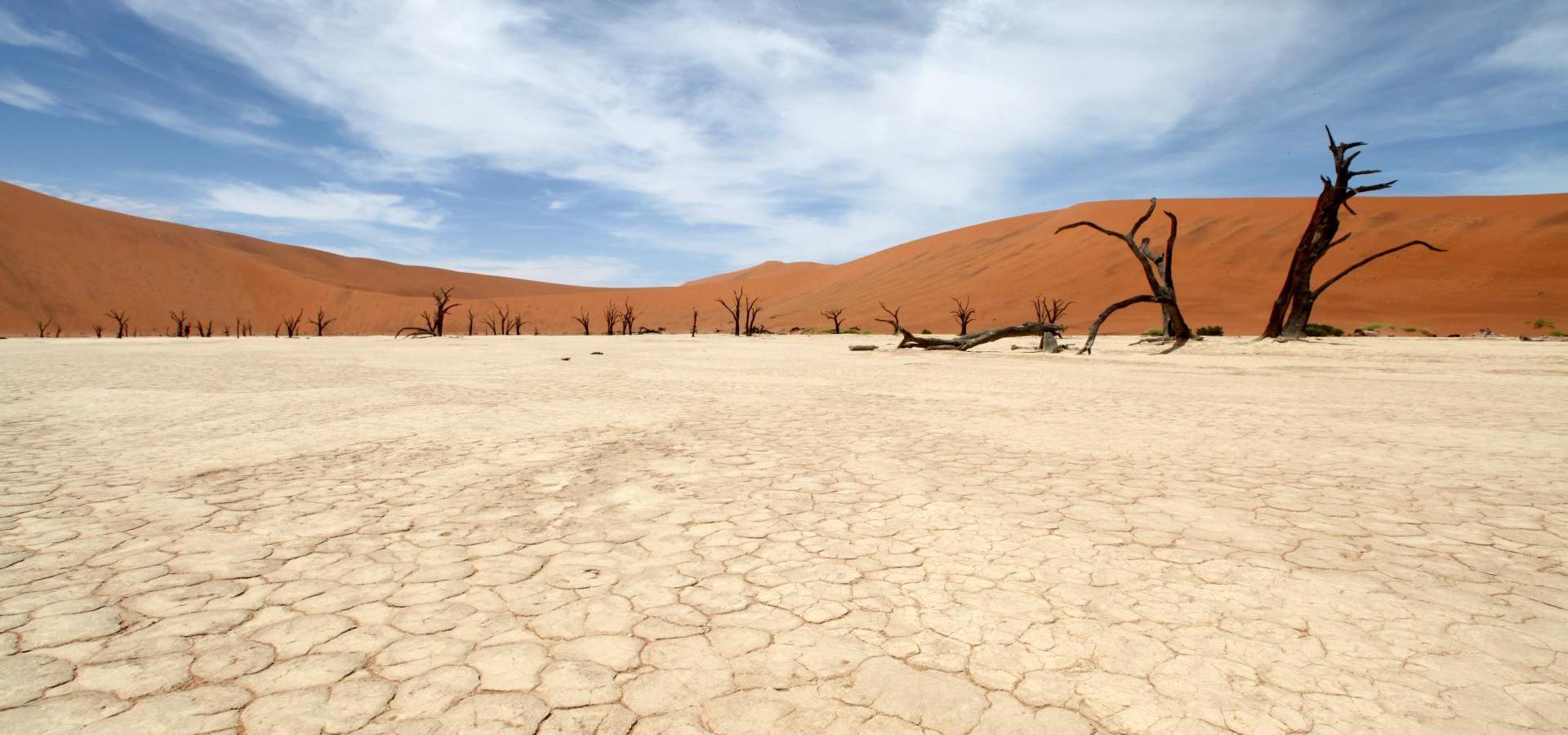 Namib Wüste - Namibia Reisen & Urlaub