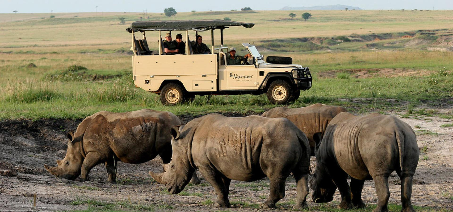 Game Drives im Nkomazi Game Reserve