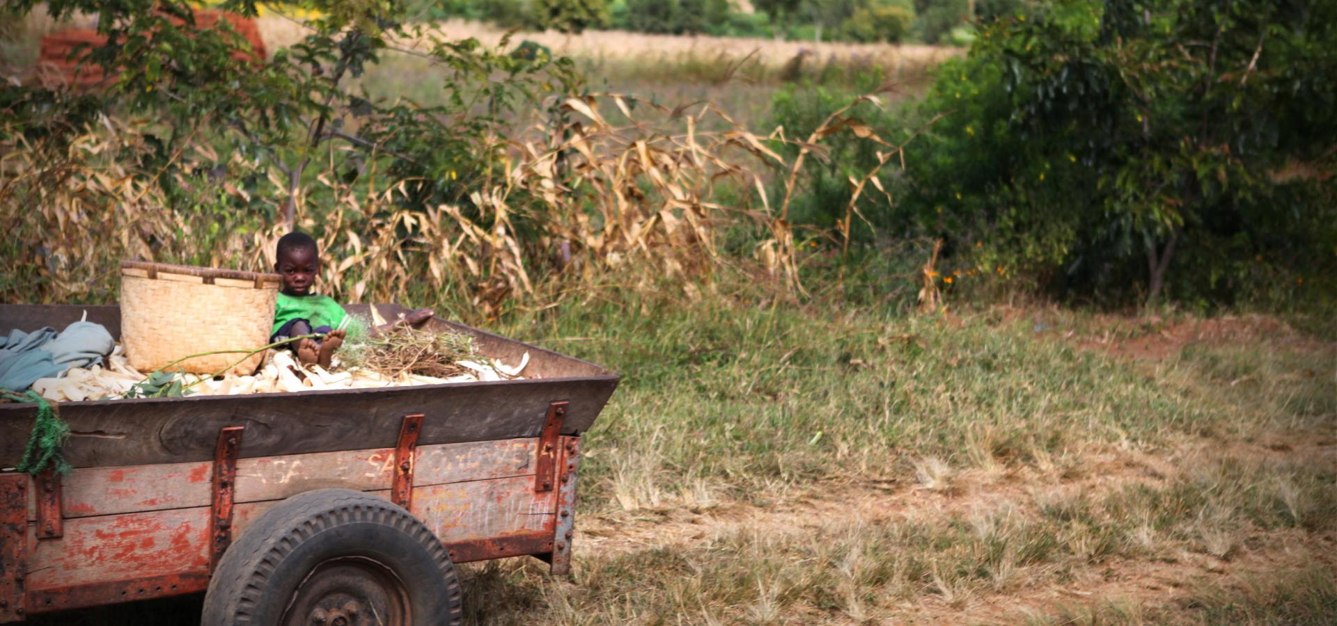 Lernen Sie die Menschen Malawis kennen und lassen sich von ihrer Lebensfreude anstecken