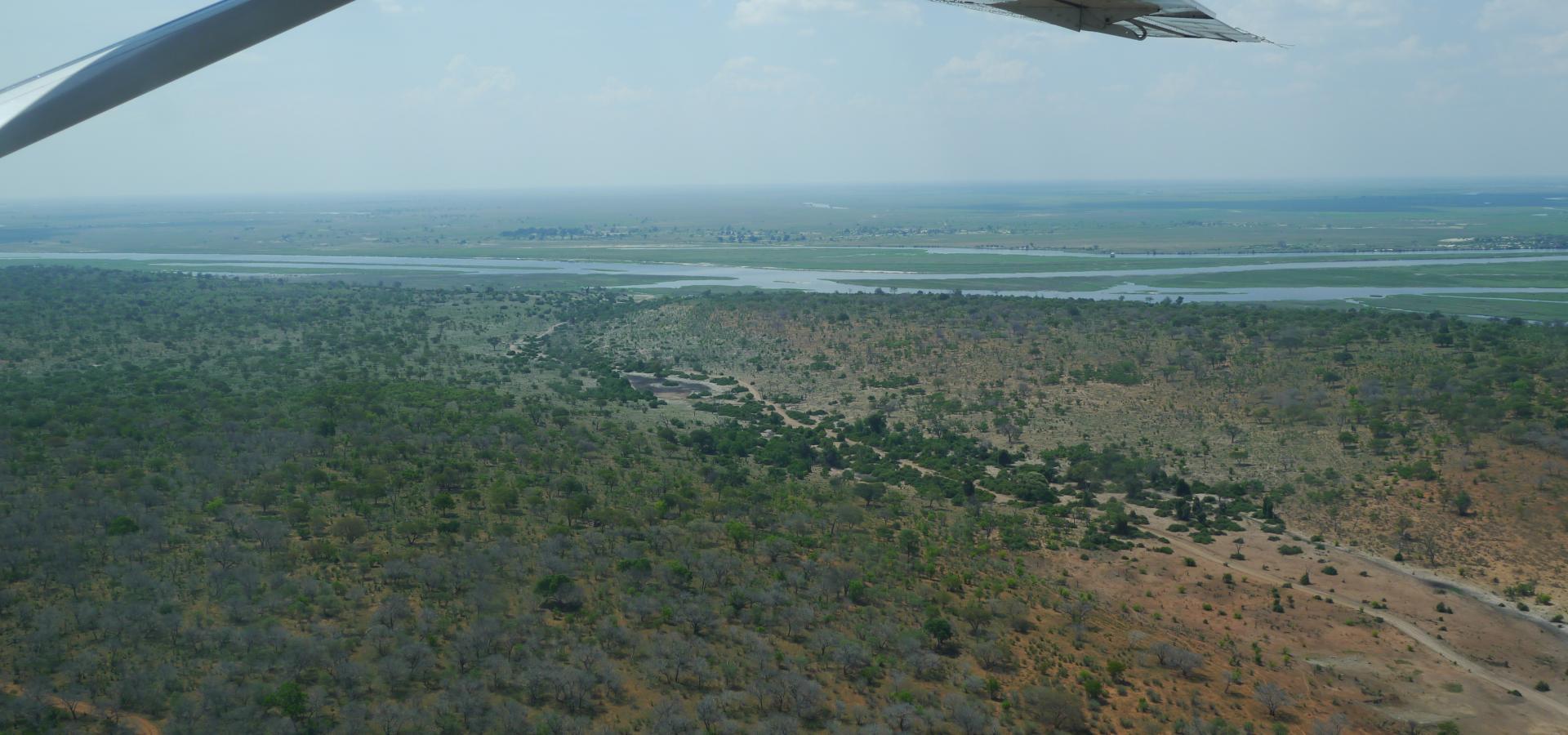 Erleben Sie die Naturschönheiten Botswanas aus der Vogelperspektive