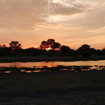 Honeymoon in Zambia und Botswana