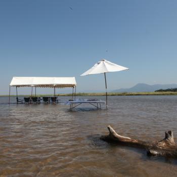 Exklusive Fly-In-Safari ins unberührte Zambia