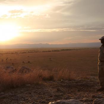 Authentisches Safarierlebnis mit Bushfeeling