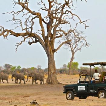Zimbabwe Relaxed - Gemütliche Reise durch Zimbabwe