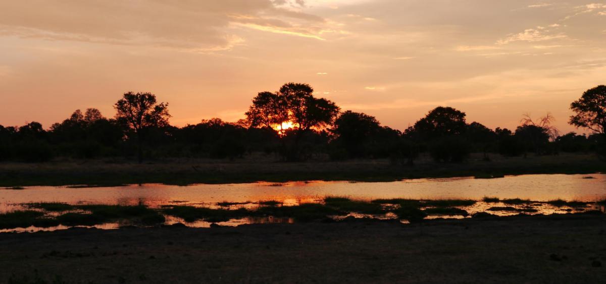 Sonnenuntergang im Okawango-Delta