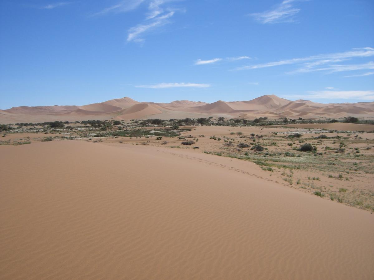 Namib Sanddünen mit rotem Sand