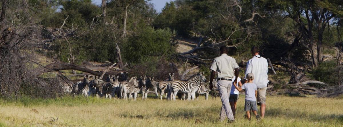 Safari mit der ganzen Familie in Afrika