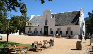 Kosten Sie die besten Weine Südafrikas auf einer idyllischen Weinfarm in Franschhoek