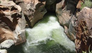 Besuchen Sie die rotschimmernden Felsformationen der Bourke's Luck Potholes in Südafrika