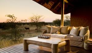 Beobachten Sie bei einem kühlen Getränk im Tswalu The Motse die Wildtiere der Kalahari