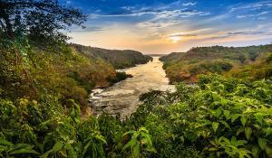 Murchison Falls und der Fluss Nil