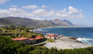In den Monaten Juni bis Dezember kann man an der Küste von Hermanus in Südafrika Wale beobachten