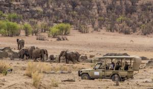 Elefanten Hoanibrivier Flussbett