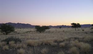 Lassen Sie sich bezaubern von der einzigartigen Stille, die die Namib Wüste bei der Abenddämmerung umgibt