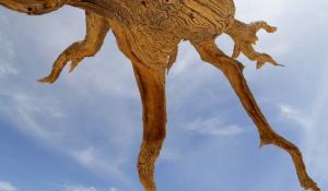 Erleben Sie den einzigartigen Anblick des Dead Vlei im Namib Naukluft National Park