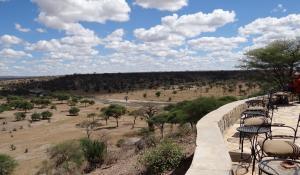 Machen Sie von der Terrasse der Tarangire Safari Lodge in Tanzania Wildtiere ausfindig