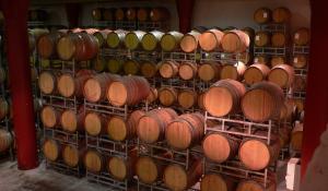 Besuchen Sie eine der vielen Weinfarmen Südafrikas in der Weinregion von Franschhoek