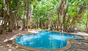 Entspannen Sie sich zwischen den aufregenden Safaris am idyllischen Pool der Greenfire Hazyview Lodge