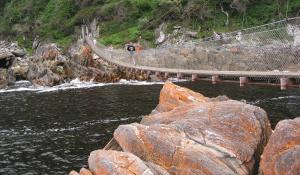 Gehen Sie auf interessante Wanderungen im Tsitsikamma National Park in Südafrika