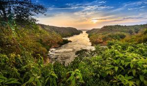 Fluß Nil - Murchison Falls