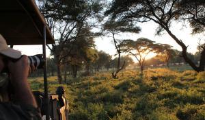 Erleben Sie die unberührte Wildnis des Lower Zambezi National Park in Zambia