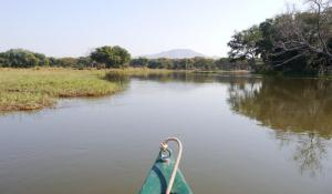naturnahe Kanufahrt durch die afrikanische Wildnis
