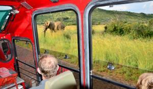 Sunway Safari Truck mit Elefant