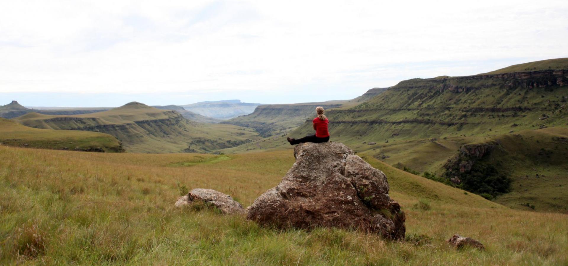 Feedback - Afrika Reisen & Safaris - Afrika Tours