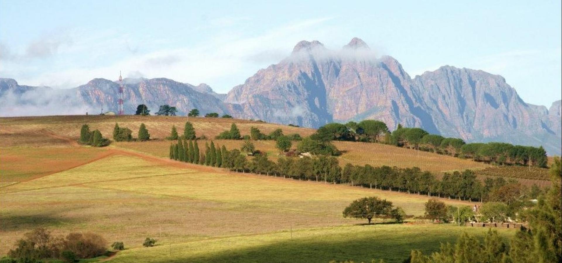 Erleben Sie die kulinarische Vielfalt mit seinen wunderschönen Weinbergen in Franschhoek in Südafrika