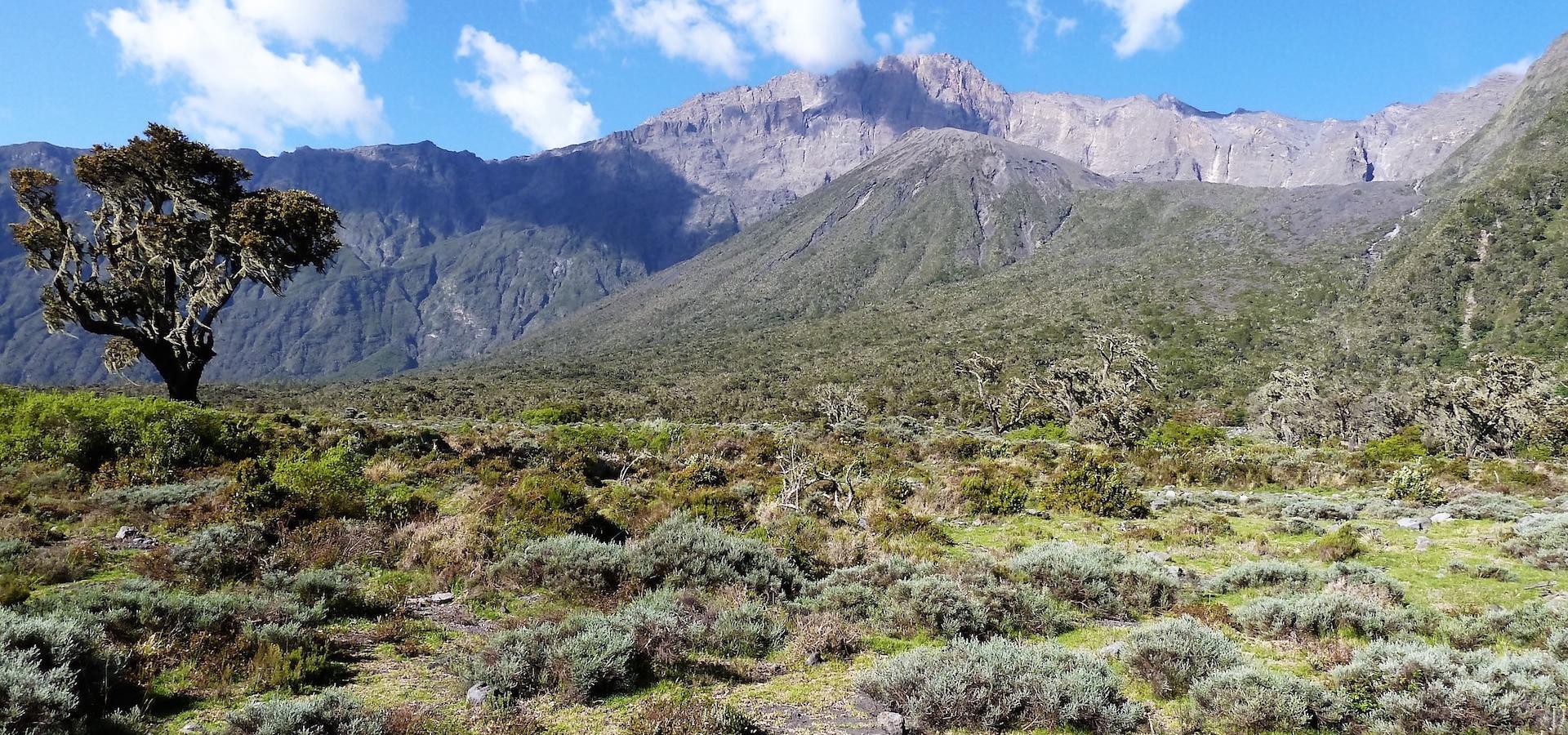 Mt. Meru & African View Trekkingtour Mt. Meru, Kultur- und Safarikombination