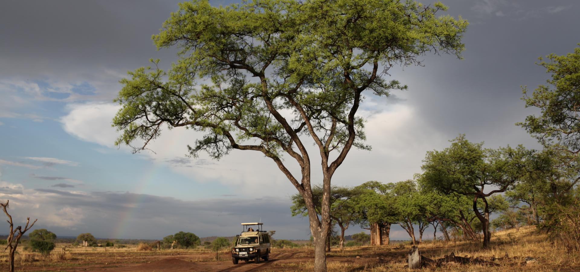 Lassen Sie in den Naturparadiesen Tanzanias wunderschöne Landschaftsbilder auf sich wirken