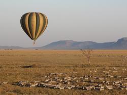 Ballon Safari in der Serengeti