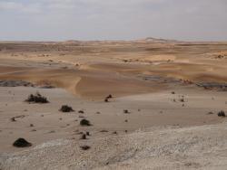 Namib Wüste bei Swakopmund