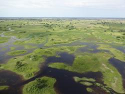 Okavango Delta aus dem Helikopter