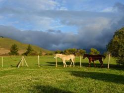 Pferde bei Rozendal