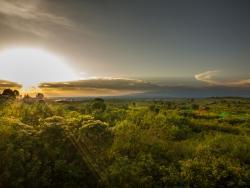 Sonnenuntergang über der Savanne