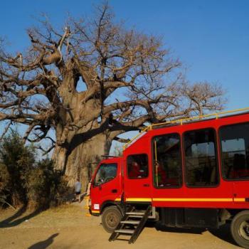 Sunway Safaris Truck